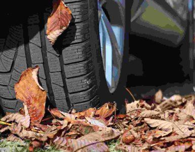 Reifen, der über braunes Herbstlaub fährt